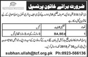 Jobs In The Citizen Foundation TCF