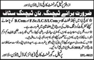 Jobs In Govt College Model Town Lahore