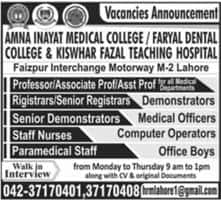 Jobs In Amna Inayat Medical College Lahore