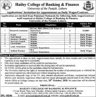 Jobs In Hailey College Of Banking And Finance Lahore