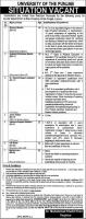 Jobs In University Of The Punjab PU