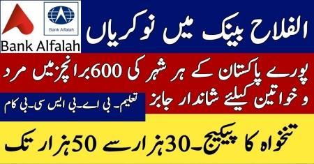 Jobs in Alfalah Bank in all Pakistan - Jobs in Alfalah Bank 2019 - Govt Jobs in Alfalah Bank.