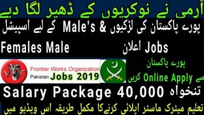 Jobs In Frontier Works Organization - FWO Jobs 2019