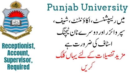 Jobs In University Of The Punjab 2019