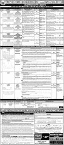 Jobs In Punjab Special Education Department - PPSC Jobs 2019