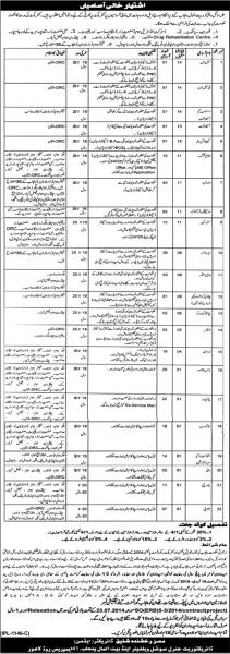 Jobs In Social Welfare And Bait Ul Maal 2019