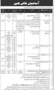 Jobs In Federal Govt PO Box 1418  - New Advertisement 2019