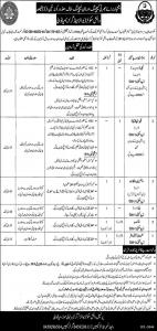 Punjab Daanish Schools And Centers Of Excellence Authority Jobs 2019
