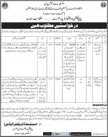 Jobs In Population Welfare Department Sindh & Punjab