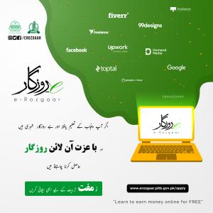 Punjab Government E-Rozgaar Training Program July 2019