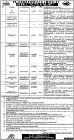 Punjab Food Authority Jobs 2019 For IT Experts, Admins, Technicians And Electrician / Generator Oper