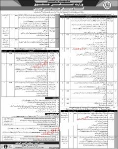 Ministry of Human Rights Jobs November 2019