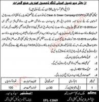 Latest Jobs for sanitary Workers in Municipal Committee Dinga 2019 December Kharian