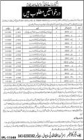 Latest Jobs At Hospitals Managed by District Health Authority Sahiwal