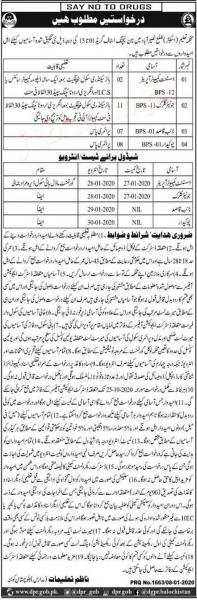 Education Department (Schools) District Naseerabad Jobs