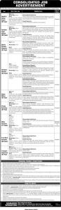 Public Sector Organization Jobs 2020 By Ots.org.pk - Apply Online