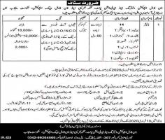 Literacy & Non Formal Basic Education Jobs Janurary 2020