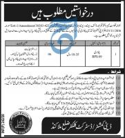 Revenue & Estate Department KPK Jobs 2020