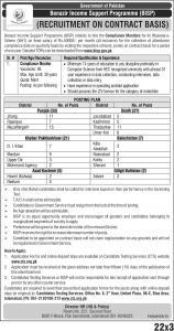 Compliance Monitors Jobs In Benazir Income Support Programme (BISP) 2020