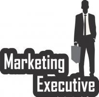 Junior Marketing Executives