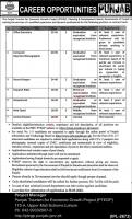 Punjab Tourism for Economic Growth Project (PTEGP) Jobs 2020 Apply Now