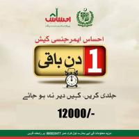 Ehsaas Emergency Cash Program Online Portal & Phases