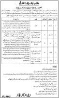PLRA Punjab Land Records Authority Jobs June 2020