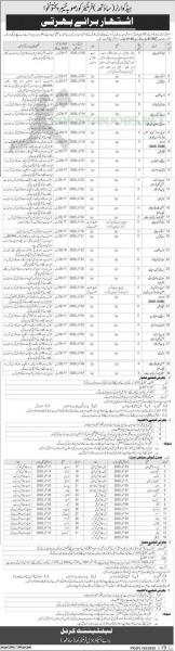 FC Jobs In Pakistan 2020 New Advertisement Apply Online