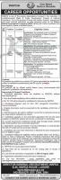 Jobs In Diamer Basha Development Company By wapda