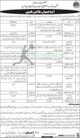 Culture Tourism Antiquities & Archives Department Jobs Sep 2020