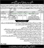 District Health Authority Jobs September 2020 Lahore