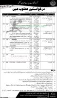 Women Development Department Jobs September 2020