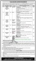 Constitutional Organization Jobs November 2020