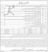 Department Of Elementary And Secondary Education Jobs NTS 2020