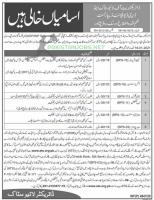Livestock & Dairy Development KPK ATS Jobs 2021 Application Form