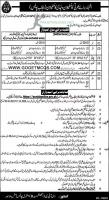 Punjab Police Jobs 2021 - Male & Female constables
