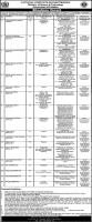 National Institute of Electronics NIE Jobs 2021
