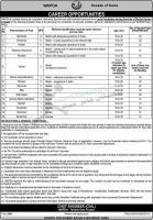 Water & Power Development Authority's Wapda Jobs 2021