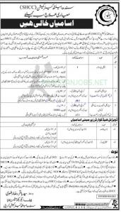 SHCC   Sindh Health Commission Jobs March 2021
