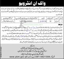 Pakistan Bait ul Mal Jobs March 2021 Latest