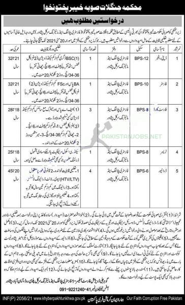 Forest Department Jobs 2021 Application Form | www.few.kp.gov.pk