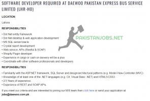 DAEWOO PAKISTAN EXPRESS BUS SERVICE LIMITED JOBS 3032