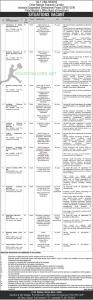 Prime Minister Office Board of Investment Jobs 2021
