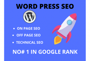 I will do on page off page and technical SEO of your website