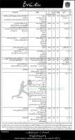 Pakistan Bait ul Mal Jobs August 2021