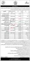 Punjab Bait Ul Maal Jobs 2021 Latest Advertisement