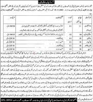 Agriculture Department Punjab Govt Jobs 2021